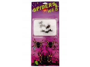 Sada pavučina a pavouci 6ks