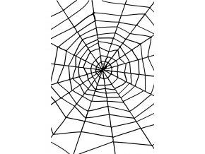Pavoučí síť s pavoukem