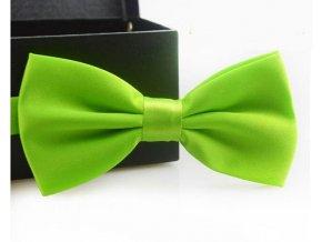 Elegantní motýlek zelený