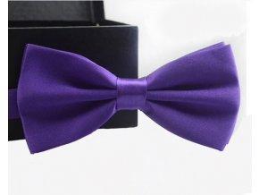 Elegantní motýlek fialový