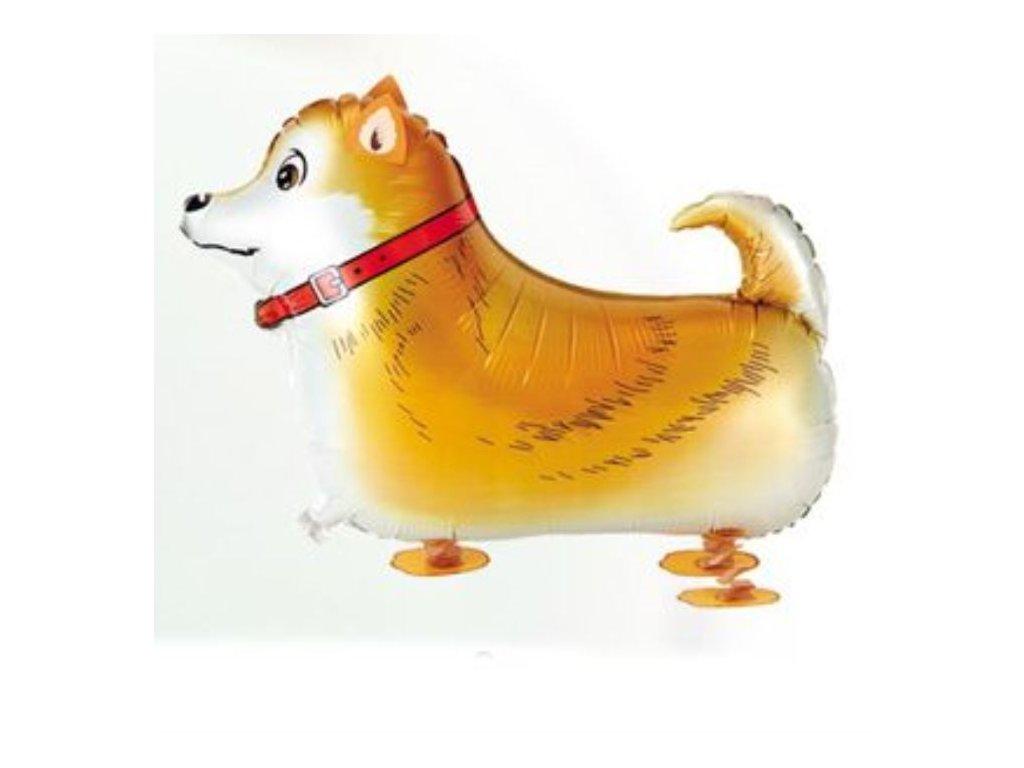 Balón foliový chodící pes - Pejsek 57 cm