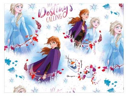 balící papír Disney Y040 (Frozen) 100x70 LUX 5811450