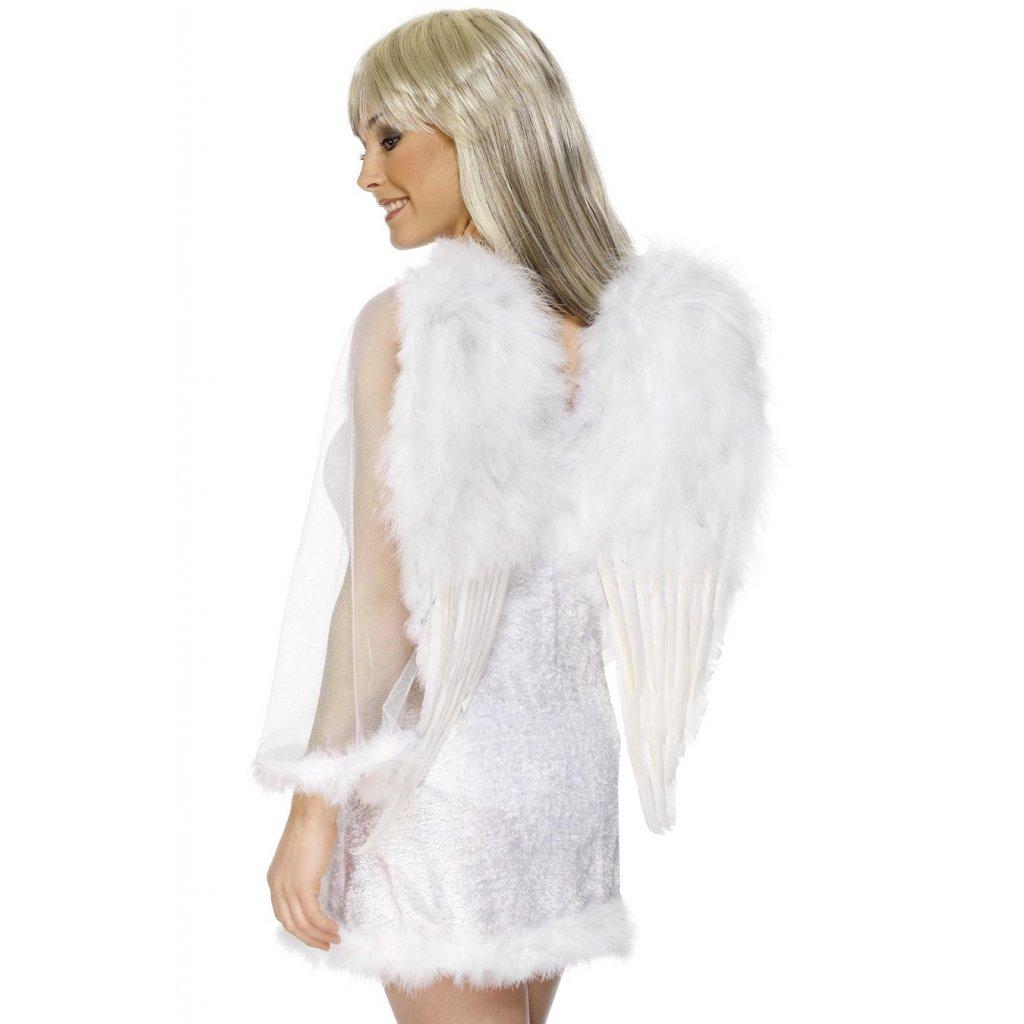 Křídla anděl 50x60 cm