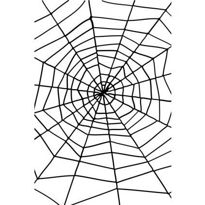 Velká pavučina s pavoukem