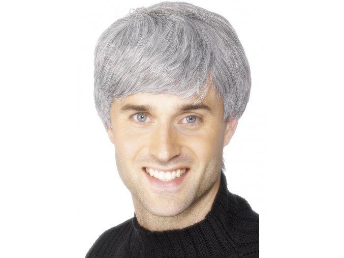 Pánská paruka šedivé vlasy