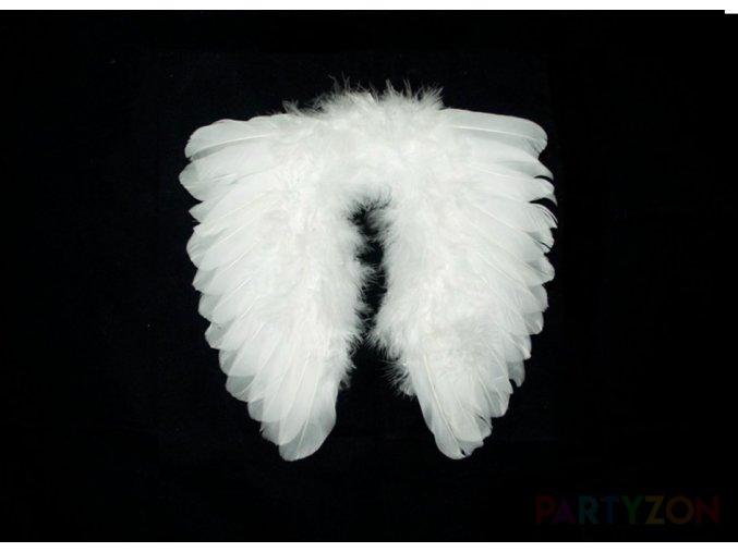 malá andělská křídla dekorace partyzon