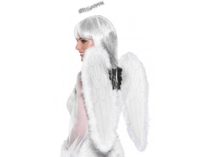 andělská křídla a svatozář