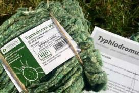 Dravý roztoč Typhlodromus pyri ochrání vaši zahradu bez chemie