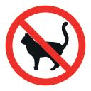 Biokill je nebezpečný pro kočky