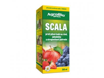 Scala 250 ml