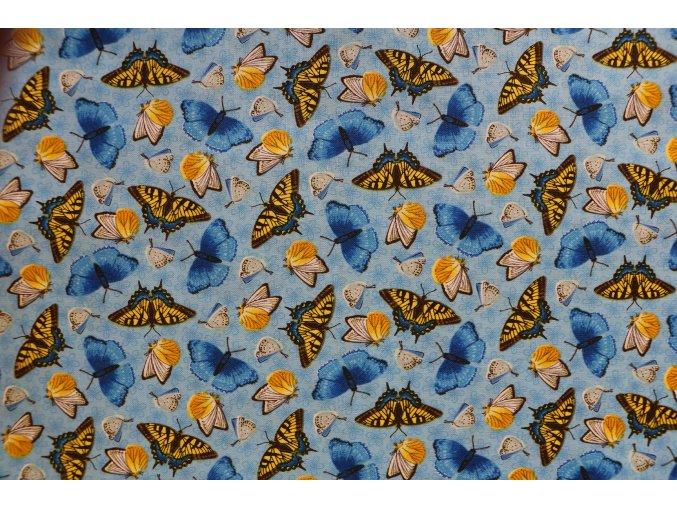 Látka Sunny Sunflowers motýlci