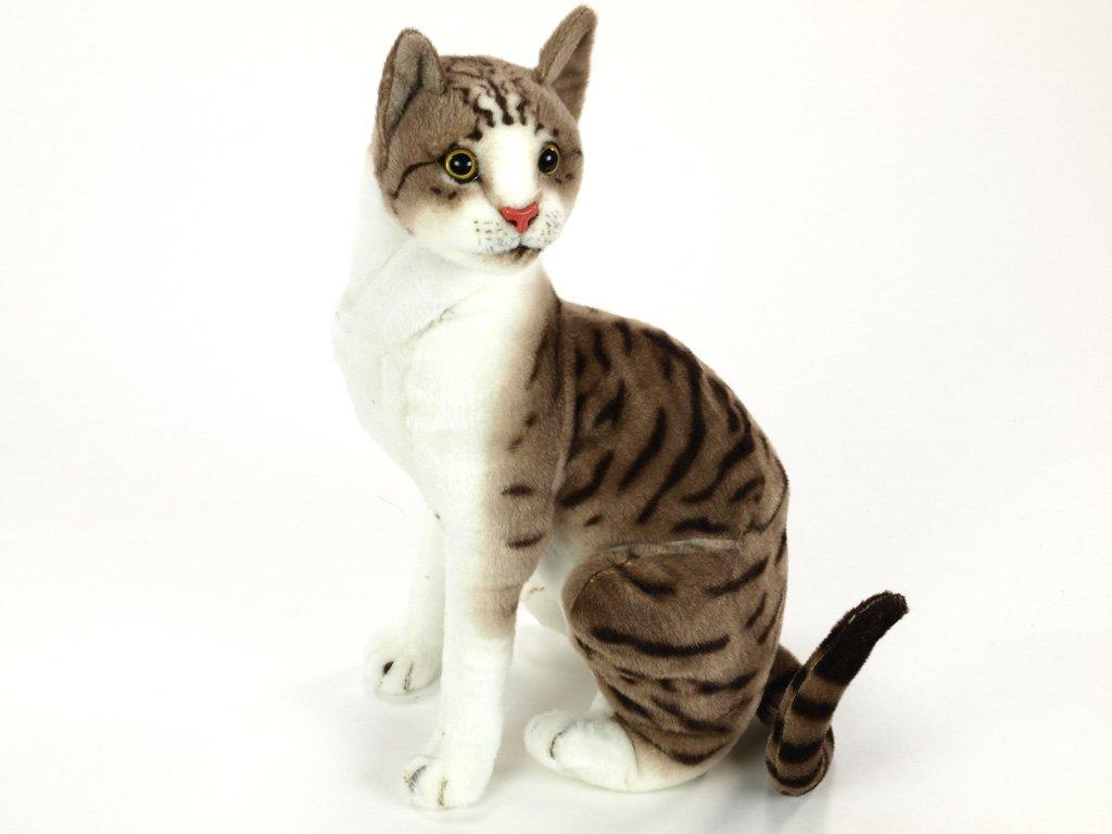 Plyšová kočka domácí