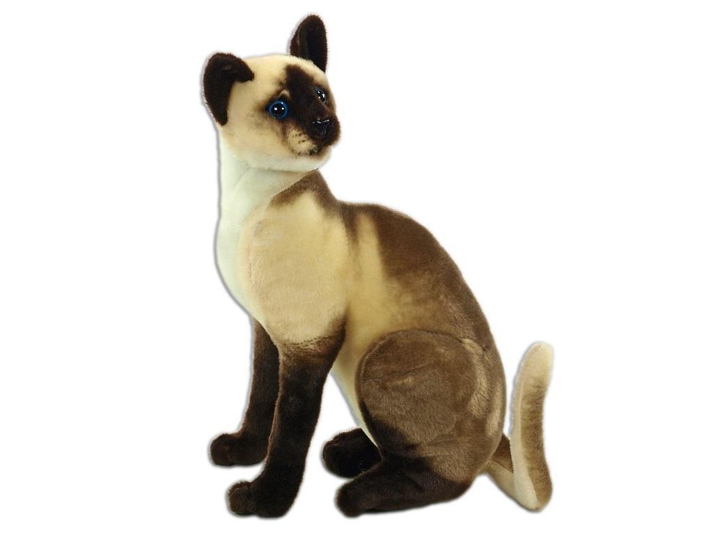 Plyšová kočka siamská