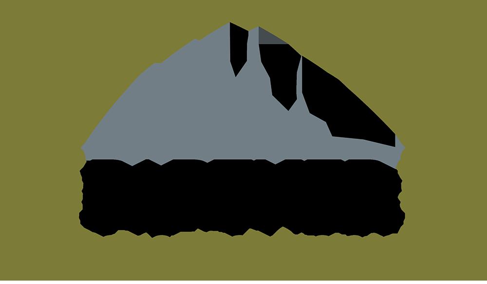 VP-Logo-1000