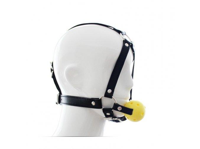 adjustable chin harness ball gag