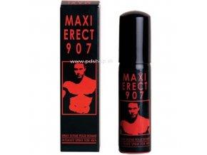 8519 maxi erect 907 25ml
