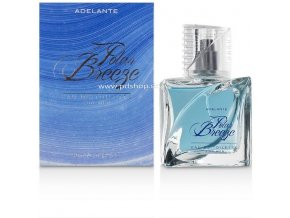 81380 cobeco polar breeze men 90 ml