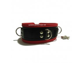leather collar2015 06 11 01 08 551499014231 (1)