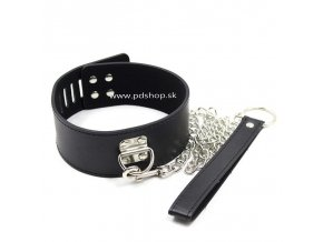 leather collar with leash (1)
