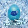 2915 1 tenga egg cool edition