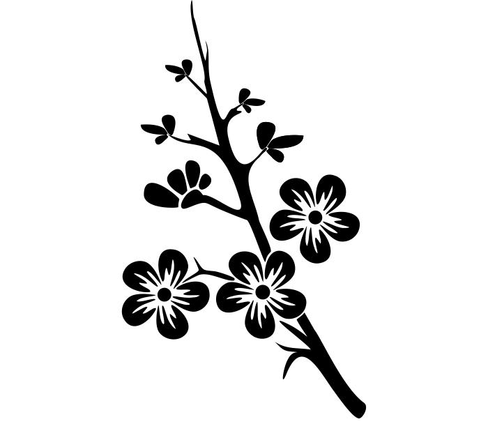 Nequitni ale kvitni