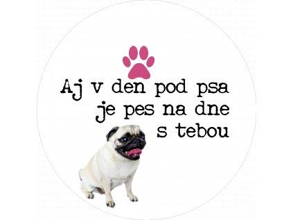 Aj v den pod psa je pes na dne s tebou