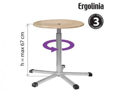 ERGOLINIA 10003