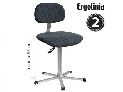 ERGOLINIA EVO2