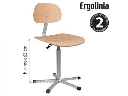 ERGOLINIA EVO4