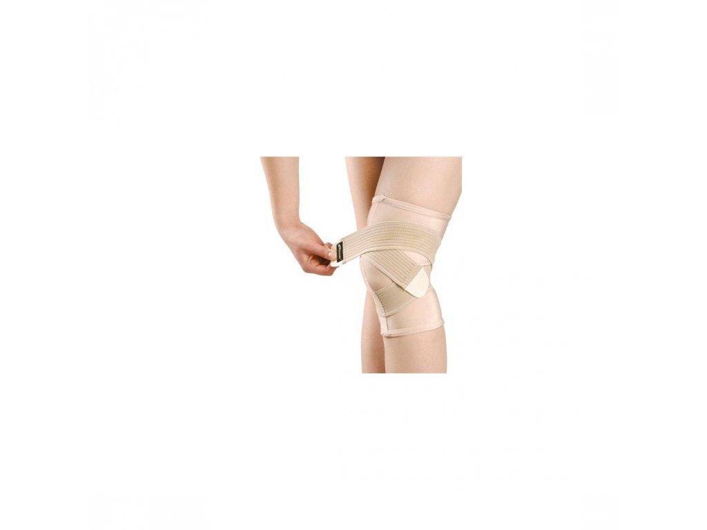basit koleno