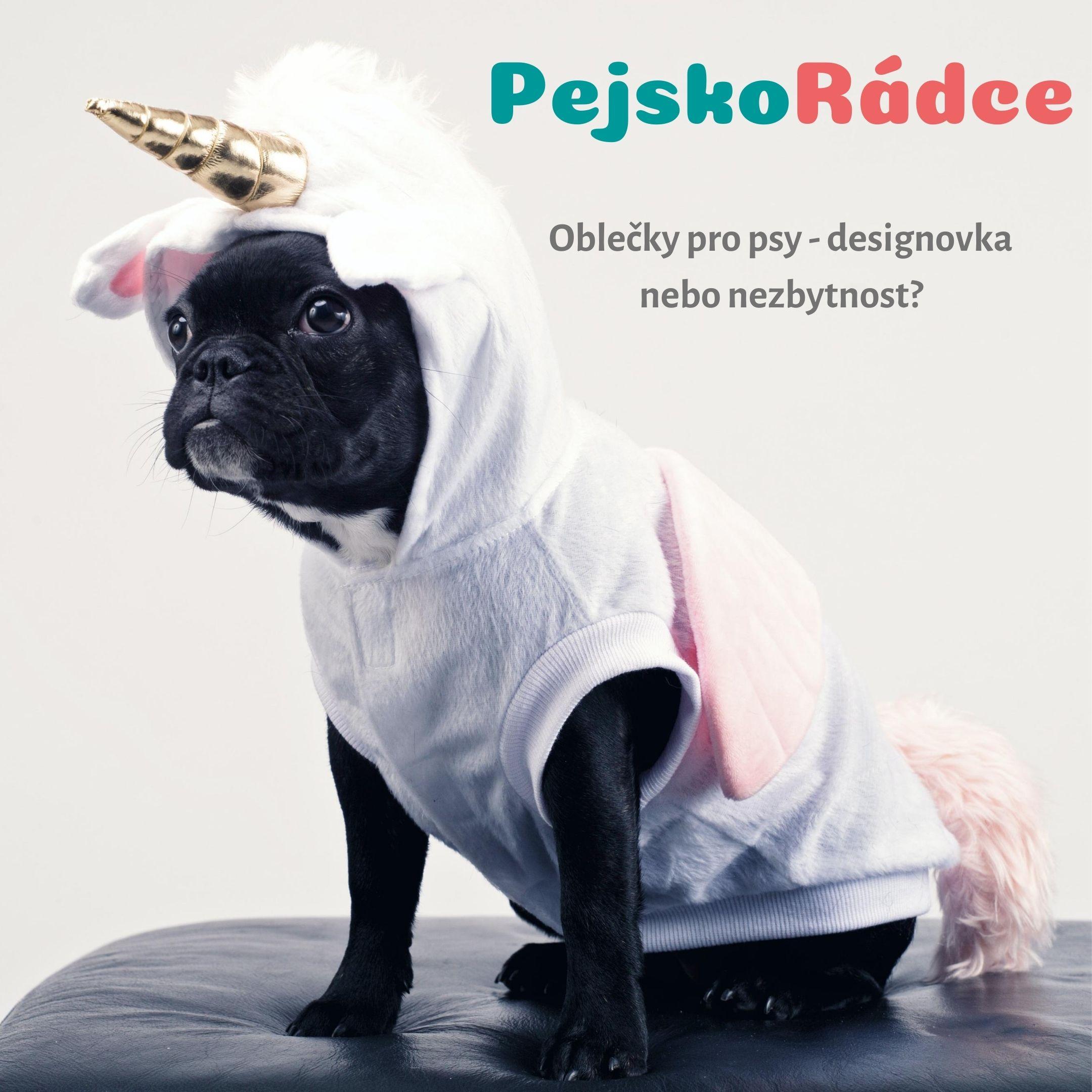 Oblečky pro psy - designovka nebo nezbytnost?