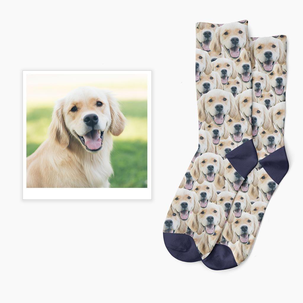 ponožky se psem