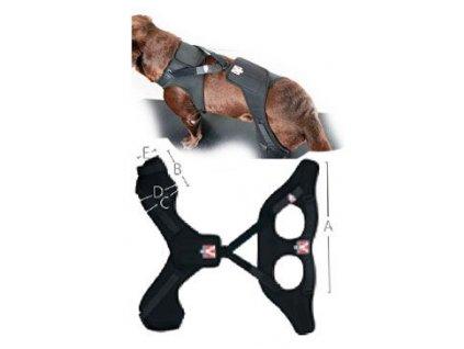 Bandáž Rehab Pro na koleno pro psa KRUUSE M pravá