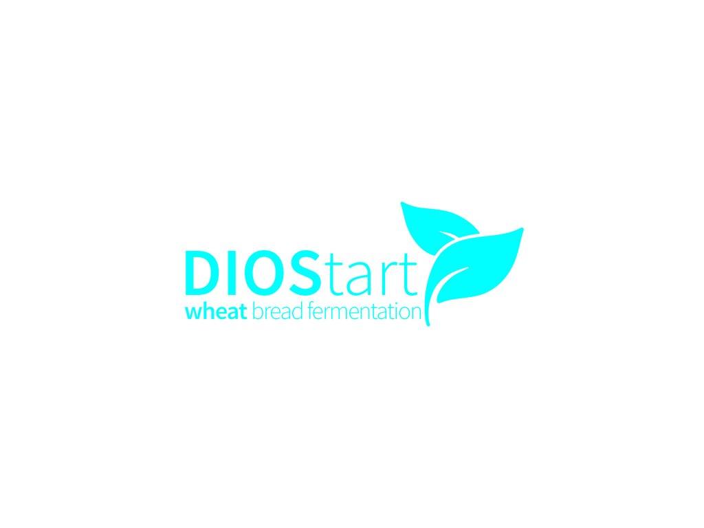 DIOStartwheatbreadfermentationWEB