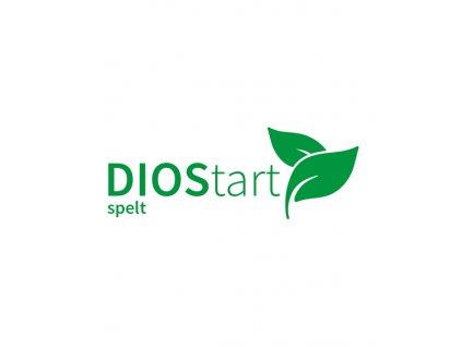 DIOStartspeltWEB