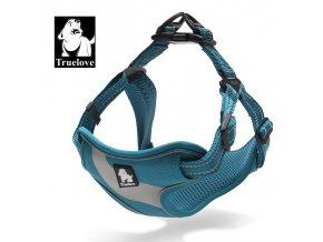 TLH5991 Blue (1) (1)