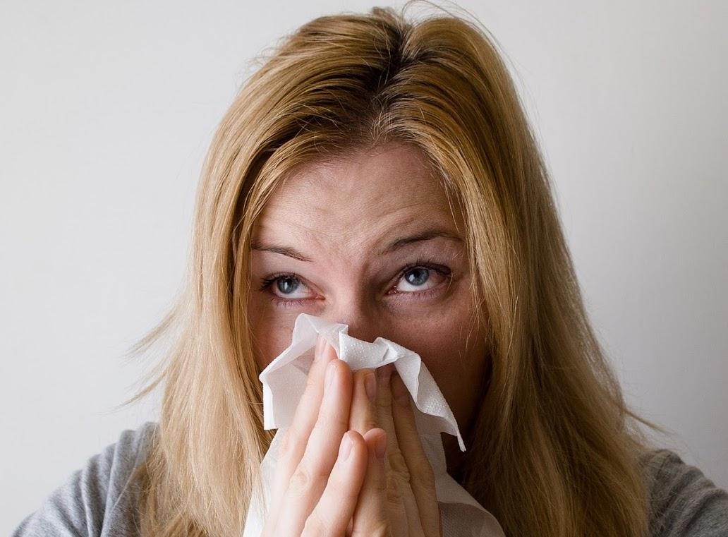 Trápí vás alergie na psí chlupy?