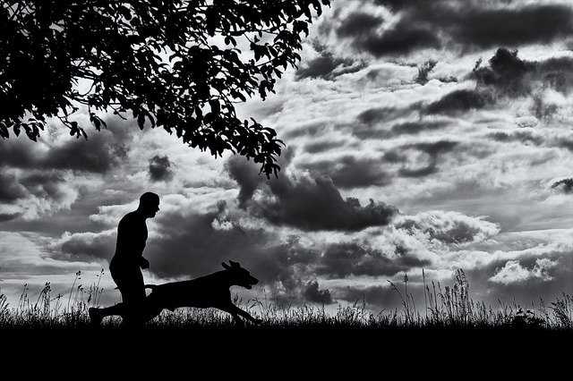 Canicross aneb běh se psem
