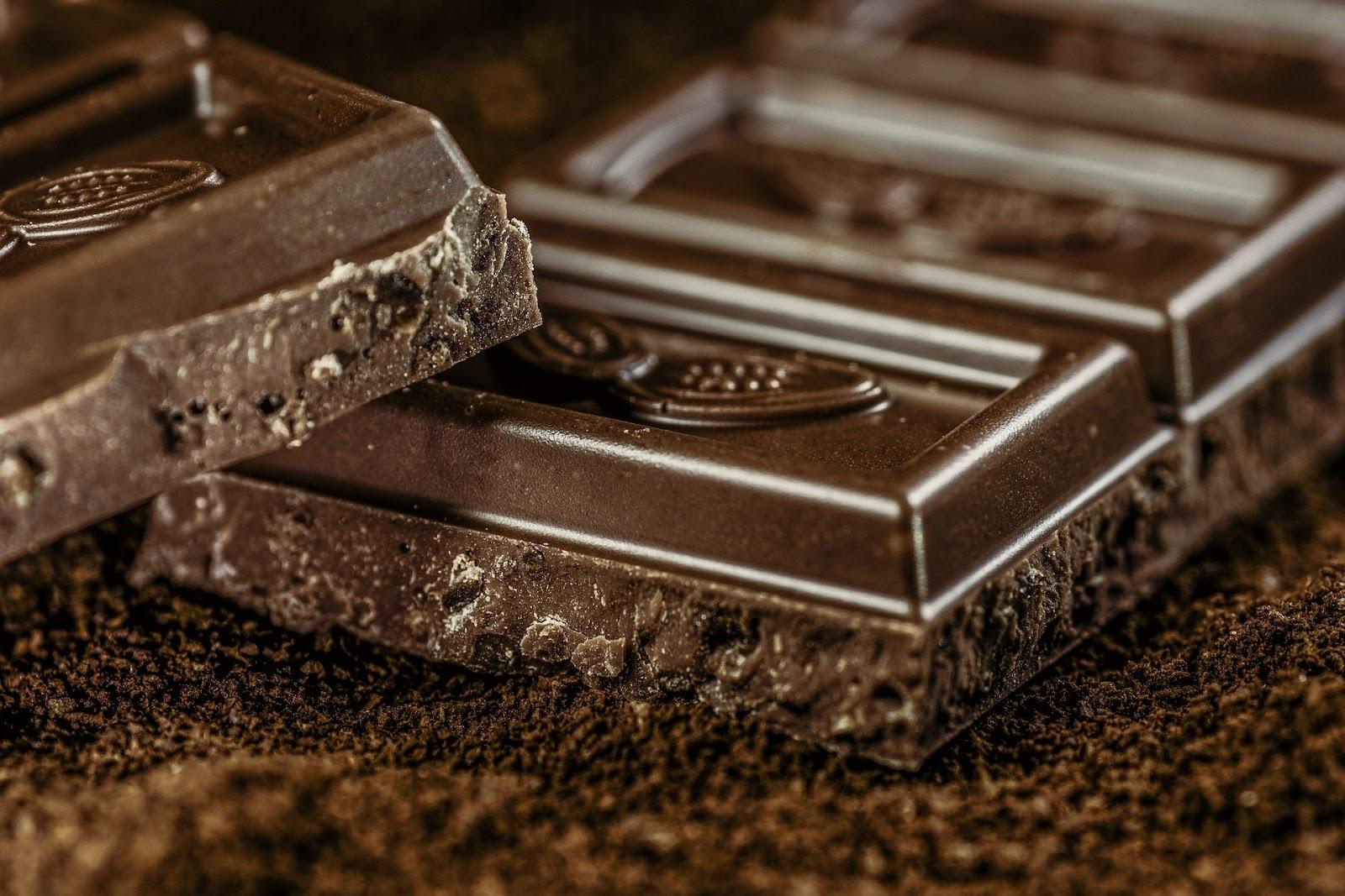 Čokoláda i avokádo mohou psovi způsobit problémy