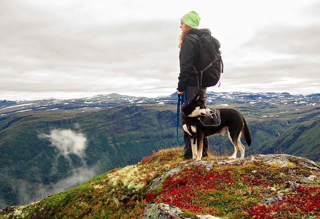 Dogtrekking - sport pro milovníky přírody