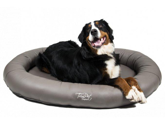 luxusni pelisek pro velkeho psa