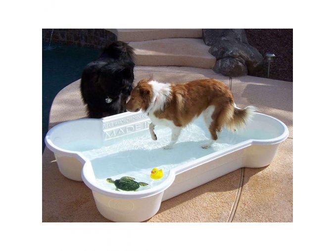 bazen pro psa bily kost