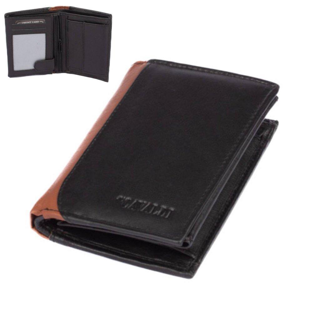 Peněženka moderní kožená pánská