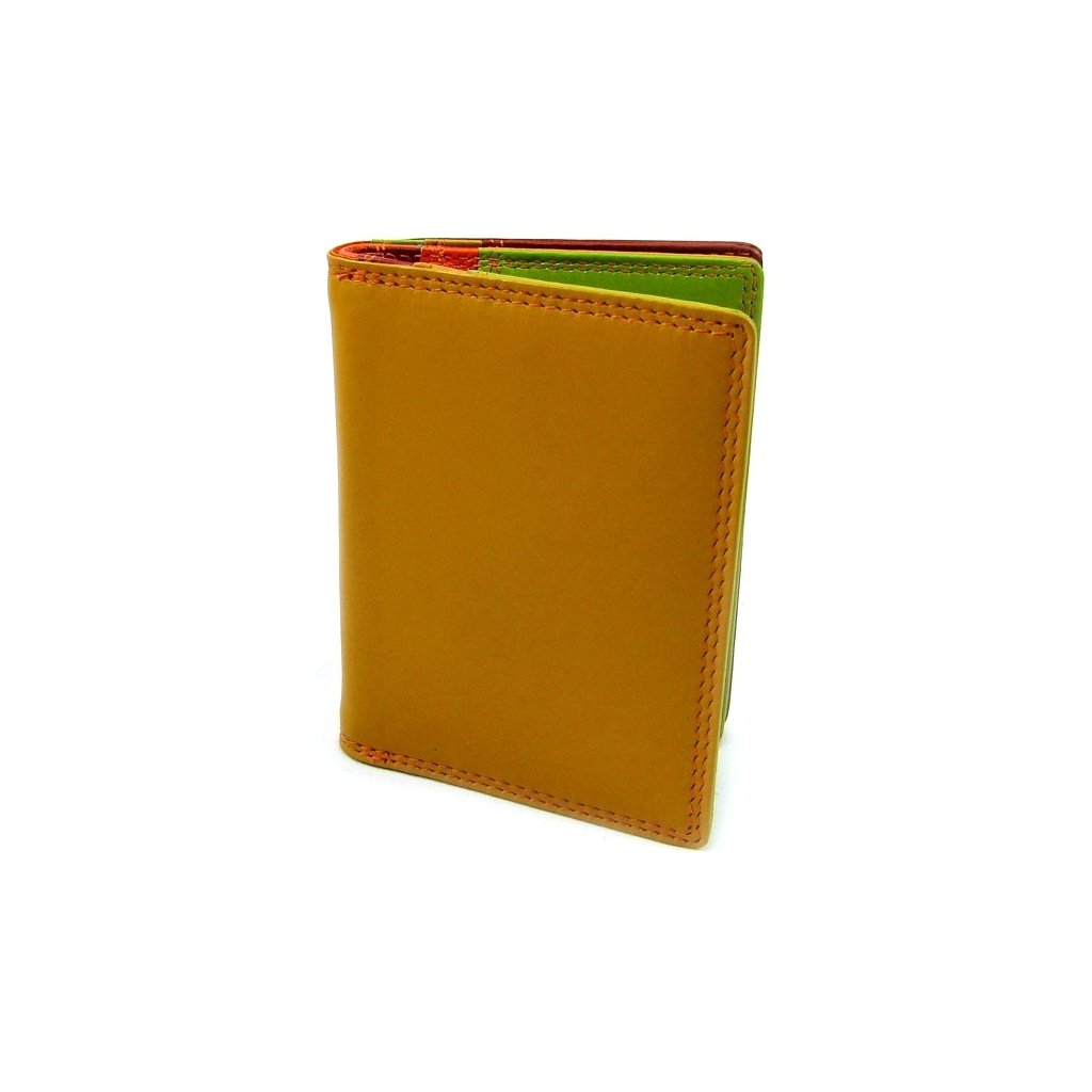 Barevné pouzdro na karty luxusní - 1