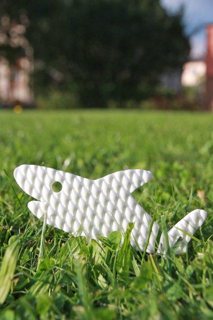 titulní fotka mořská zvířátka
