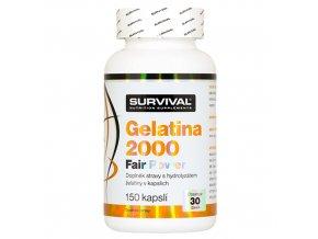 500x500 gelatina2000survival
