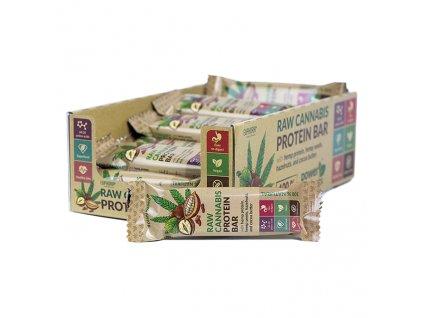 Euphoria Raw Cannabis Protein Bar Cocoa 50g EU