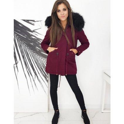 Zimní a podzimní bunda Teplá parka s kapucí a kožíškem (21)