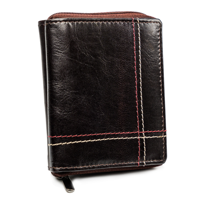 ALWAYS WILD Pánská kožená peněženka na karty Barva: Hnědá