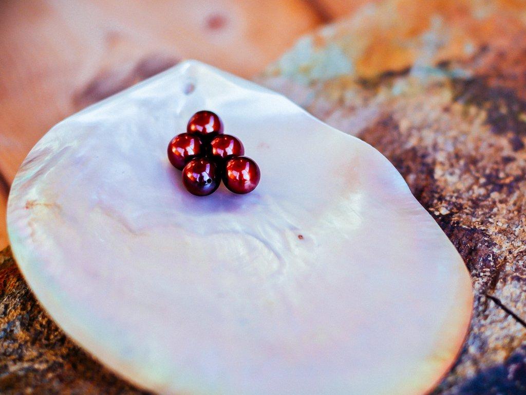 perla tmavě hnědá 7 - 7.5 mm